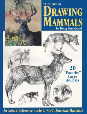 Drawing Mammals